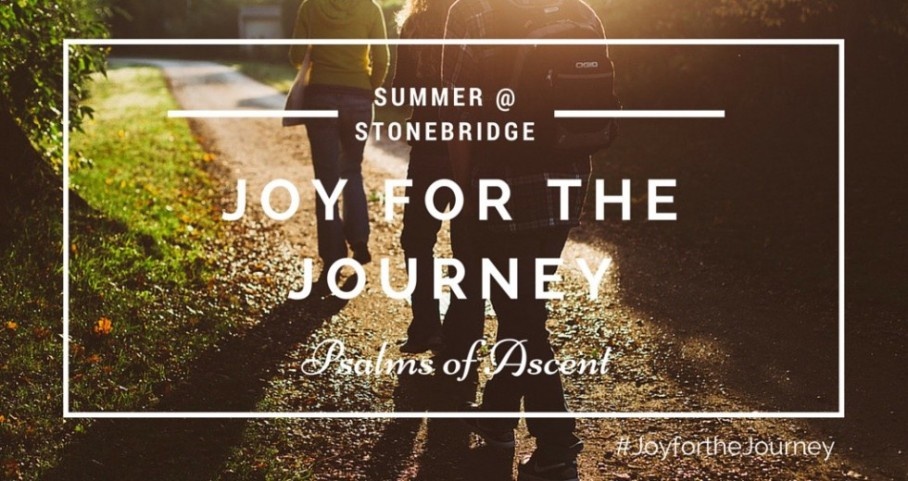Joy For the Journey | Summer 2015